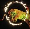 Цирки в Кинеле
